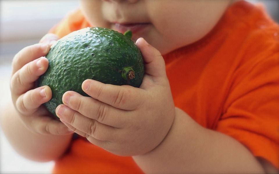 Baby, Avocado, Kind