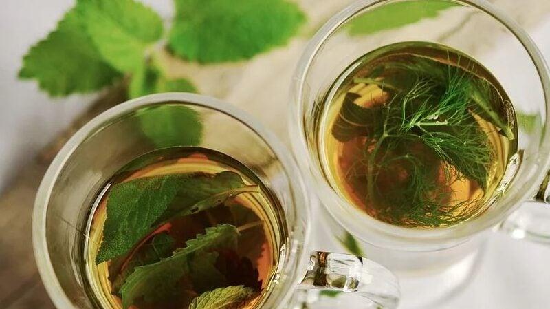Tee, Teesorten