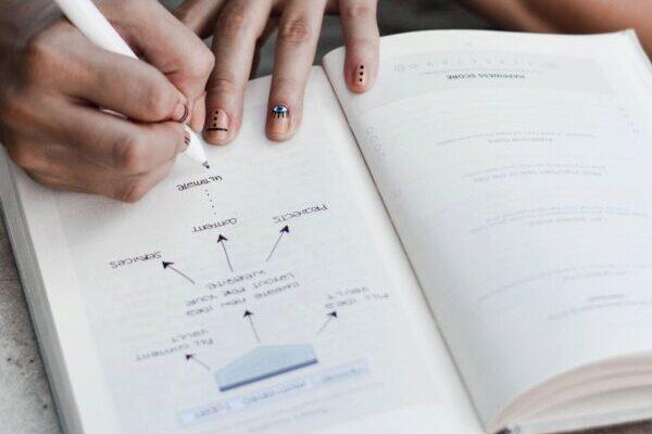 Ziele, Notizen, Buch