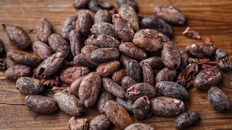 Kakao Powerbohne Vivani