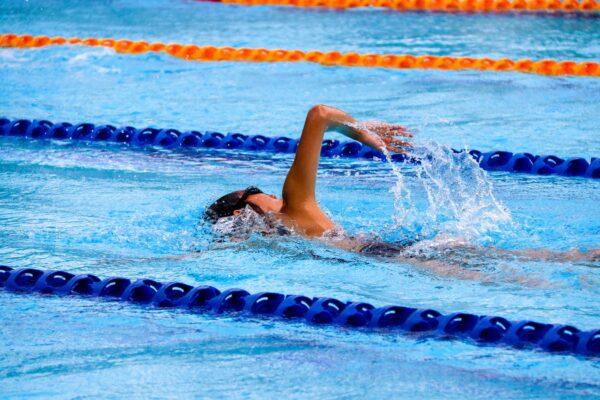 Brustschwimmen, Schwimmen